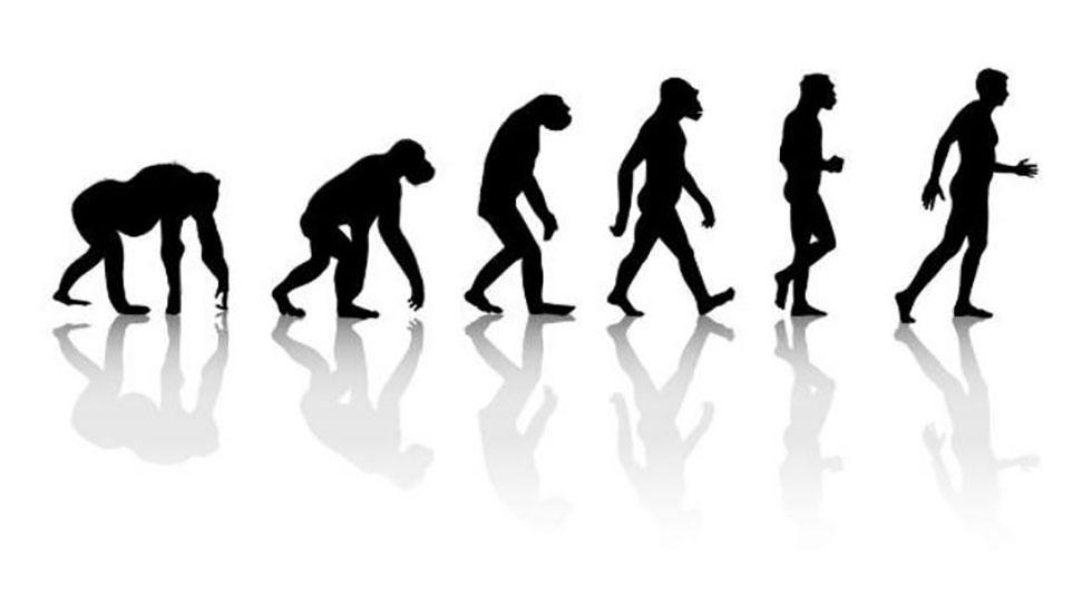 مکاتب دهگانه استراتژی و رویکرد داروینی