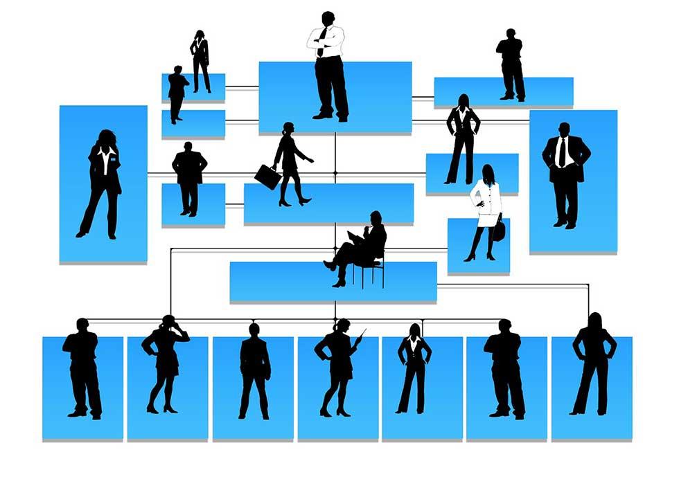 مارکتینگ پلن و ساختار سازمانی
