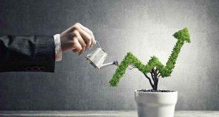 استراتژی های رشد کسب و کار