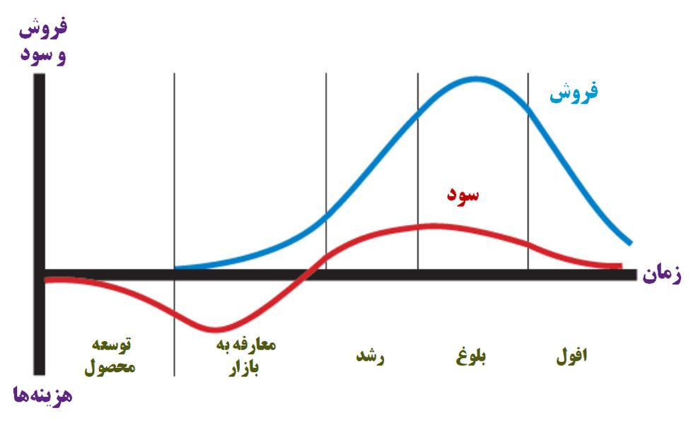 محصول جدید و چرخه عمر