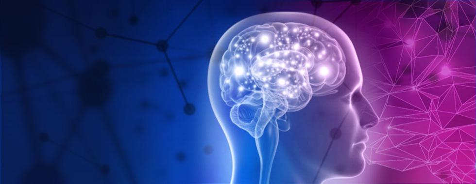 عشق از دیدگاه علوم اعصاب