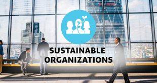 سازمان های پایدار