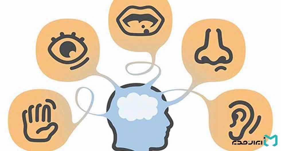 رفتار سازمانی و شکلگیری ادراک فردی